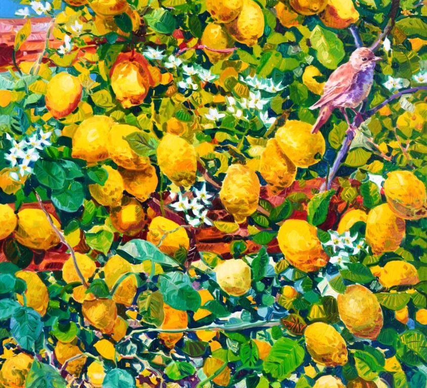 Il passero gioisce al giallo dei limoni